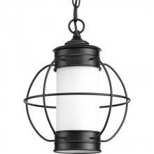 Progress P550014-031 - One-light hanging lantern