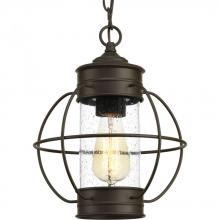 Progress P550015-020 - One-light hanging lantern